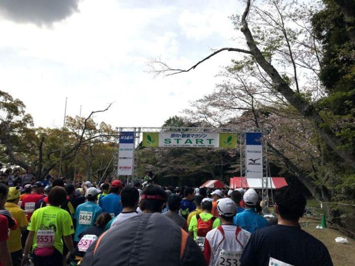 掛川・新茶マラソンスタート