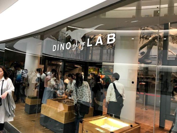 福井恐竜博物館1F