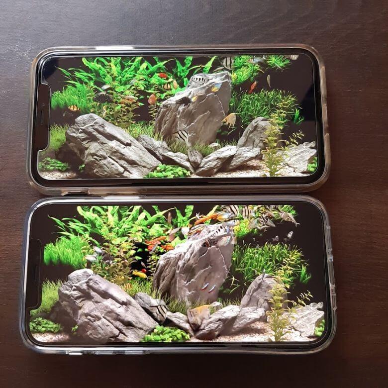 iPhone12とiPhone11の画質比較
